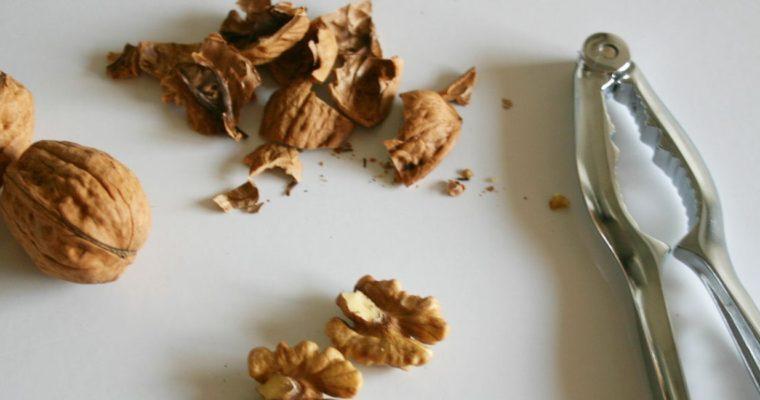 Chocolate Maple Walnut Pralines
