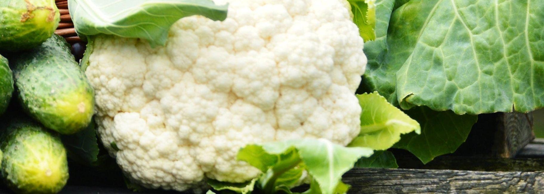 Roasted Garlic, Cauliflower & Wasabi Mash Potatoes