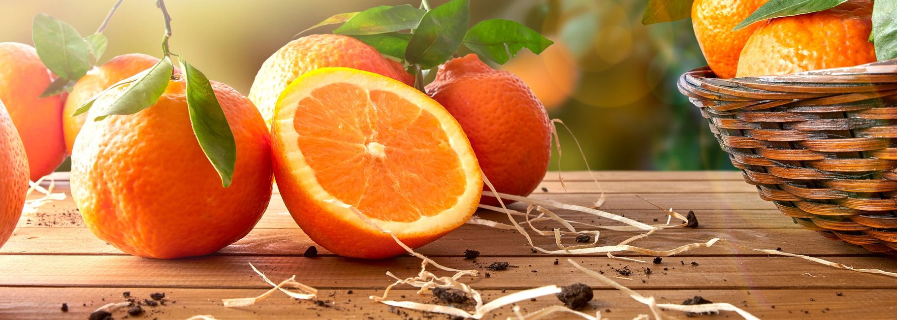 Orange Bonbon Cake