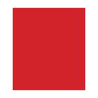 Expert tech Logo