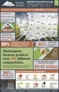 This graph from the Washington State Department of Agriculture shows 2019 research of the production of crops, average agriculture industry revenue, and location, density and types of farms throughout the entire state.