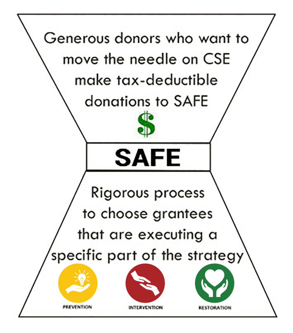 SAFE - Generous donors who want to move the needle on CSE make tax-deductible donations to SAFE. Rigorous process to choose grantees that are executing a specific part of the strategy.