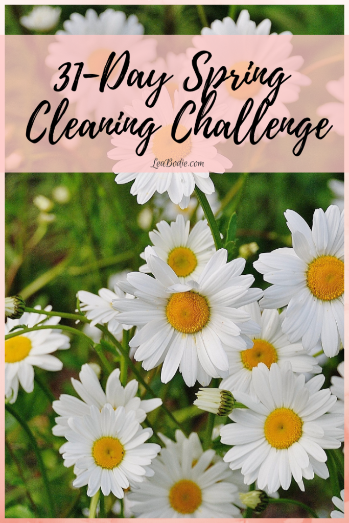 31-Day Spring Cleaning Challenge