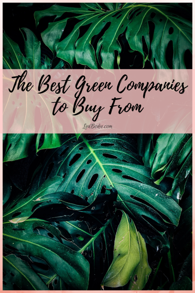 The Best Green Companies to Buy From