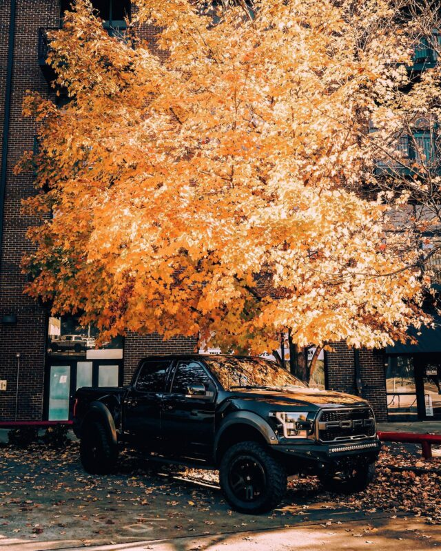 🍂 Cliffhangers @ HQ 🍂 • • • #draft #thinkdraft #fall #foliage #knoxville #easttennessee #downtownknoxville #ford #fordraptor #raptor #trucksofinstagram #f150 #leica #leicadlux7