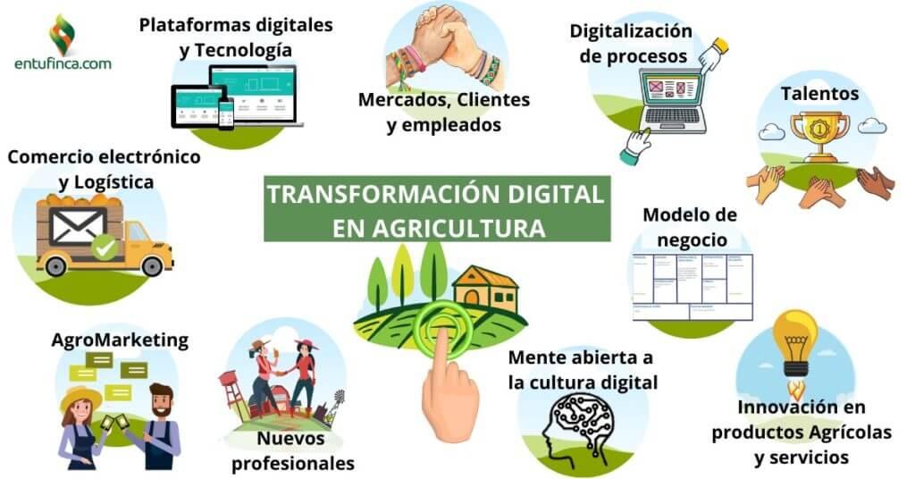 Transformación Digital en Agricultura