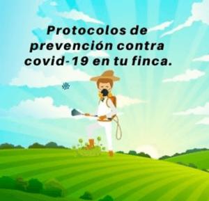 ProtocoloCovid19, #entufinca