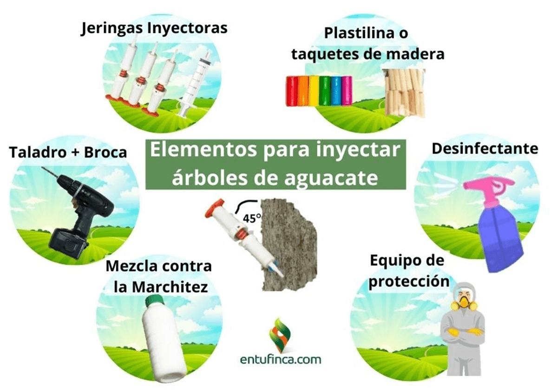 Elementos para inyectar aguacate hass