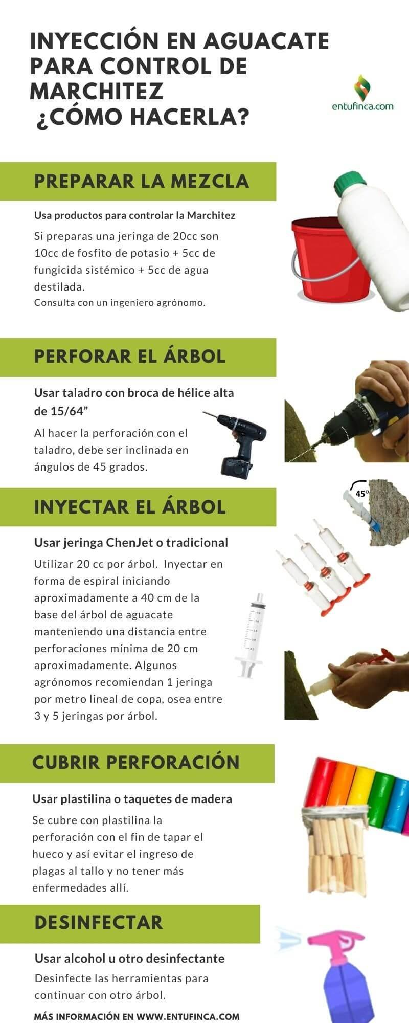 Infografía Inyección de aguacate