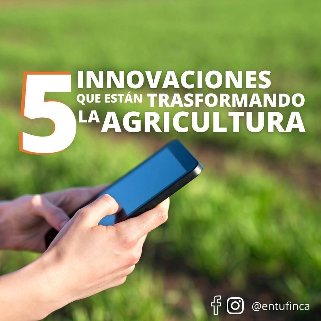 Conoce las 5 innovaciones que están transformando la agricultura.