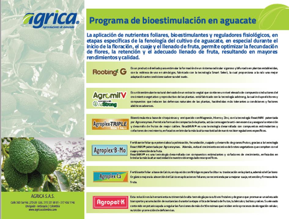 #ProgramaBioEstimulaciónAguacate, #EnTuFinca