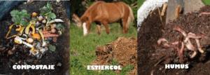 #AbonosOrgánicos, #Lombricultura
