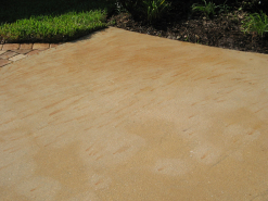 Fertilizer Stain Removal Before
