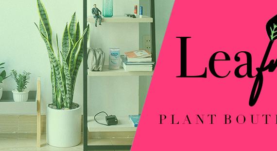 Leaf Me, a houseplant brand