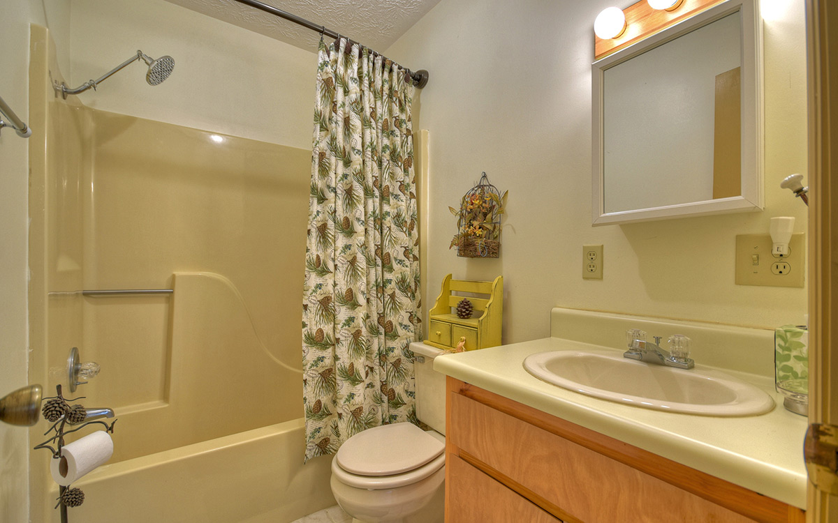 bluebird cabin bathroom 1