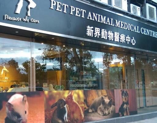 新界動物醫療中心-1