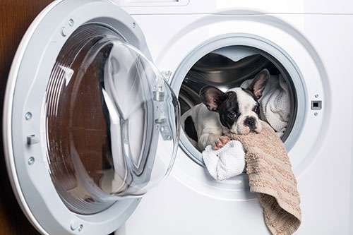 Laundry Monster, organization, shine, straighten your paths, declutter, cleaning your home, housekeeping