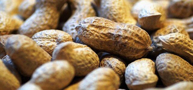 peanuts-2163043_640