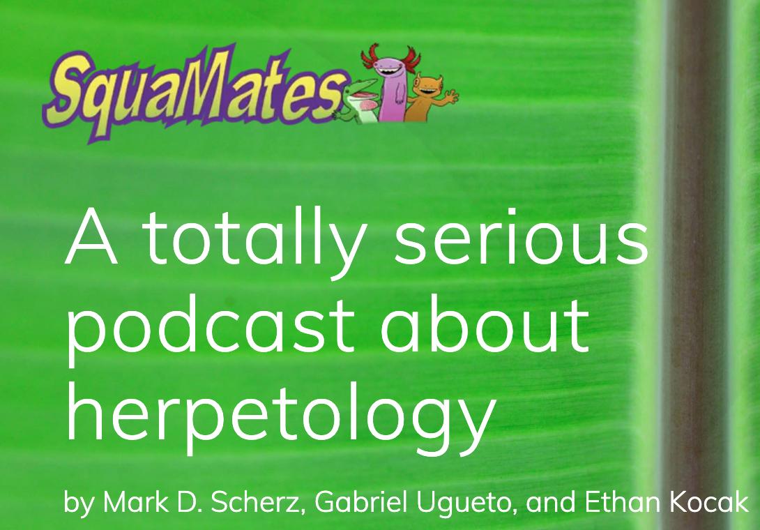 squamates podcast