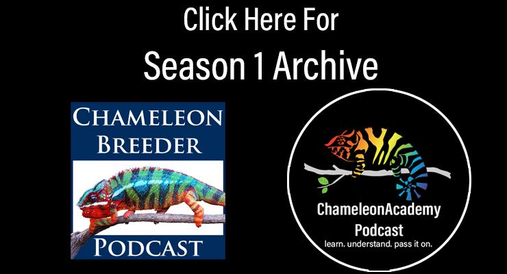 Season 1 Archive