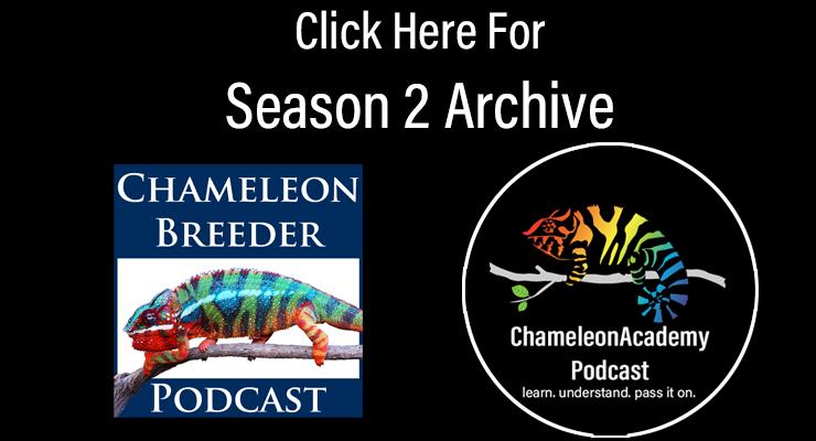 Season 2 Archive