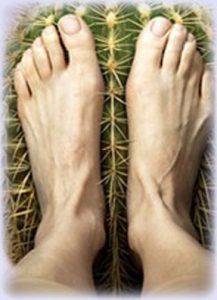 nice_feet-217x300