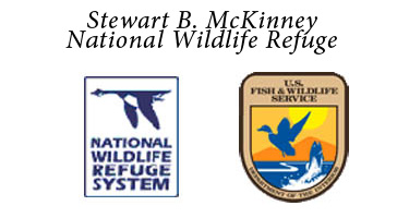 stewart-b-mckinney-national-wildlife-refuge