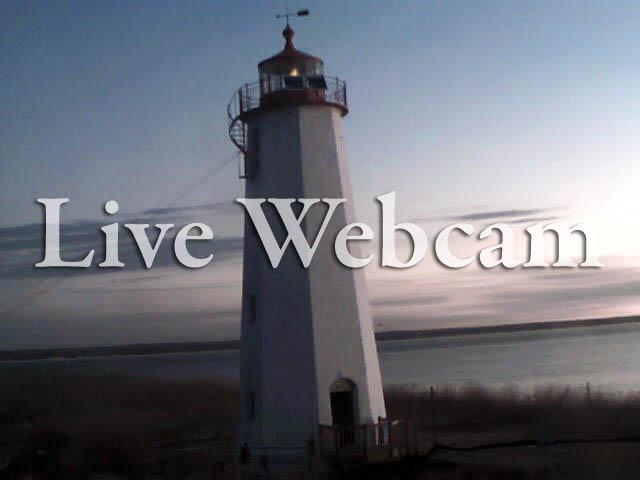 Live Web Camera