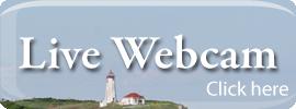 Live Webcam click here