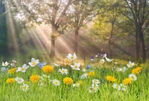 10 Ways to Shine Brightly!