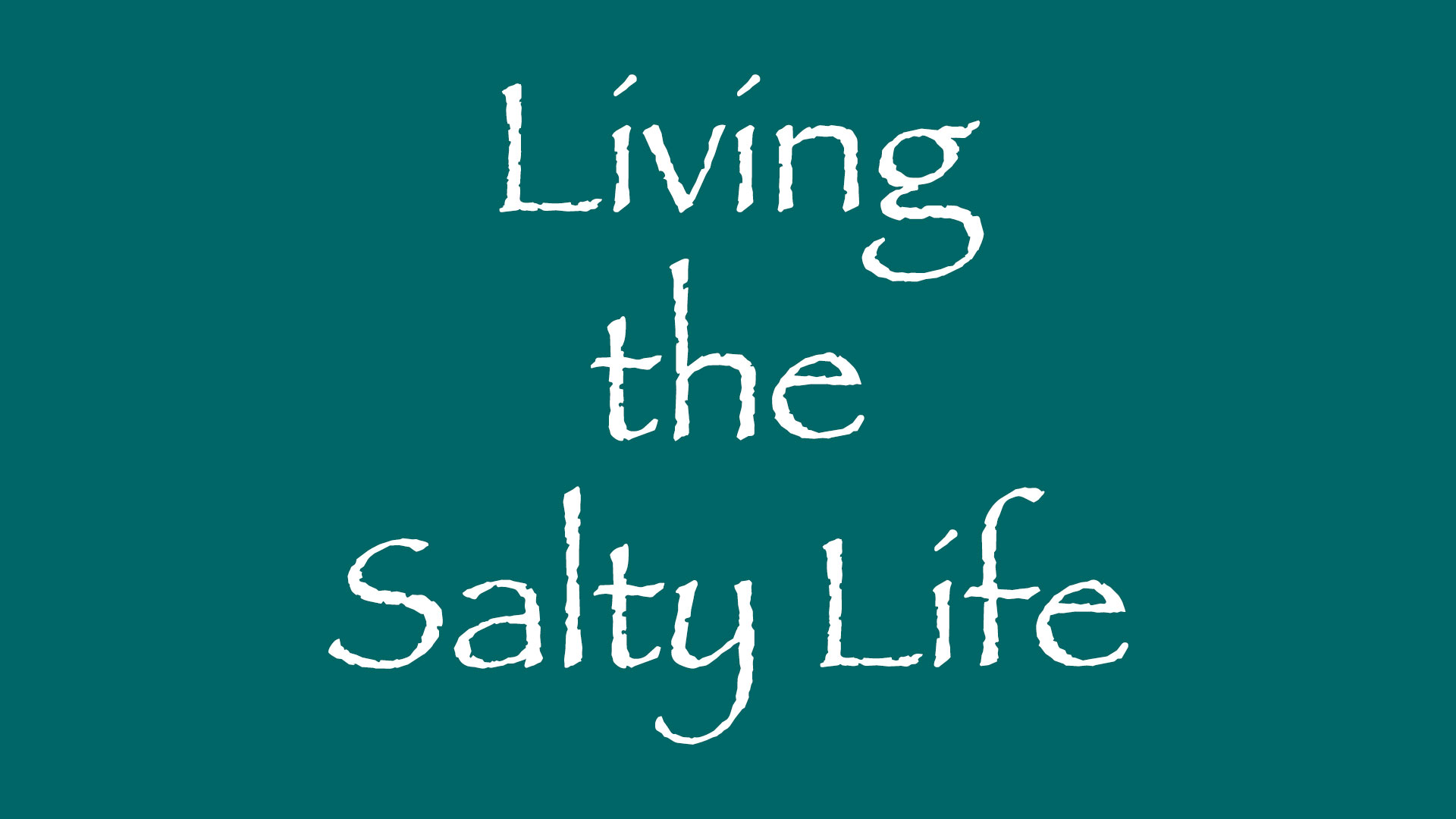about salt ventures - living the salty life