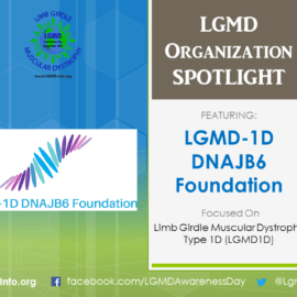 ORGANIZATION:  LGMD-1D DNAJB6 Foundation