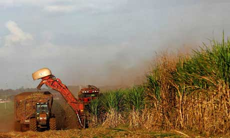 Food Shortages and Bio-Fuels