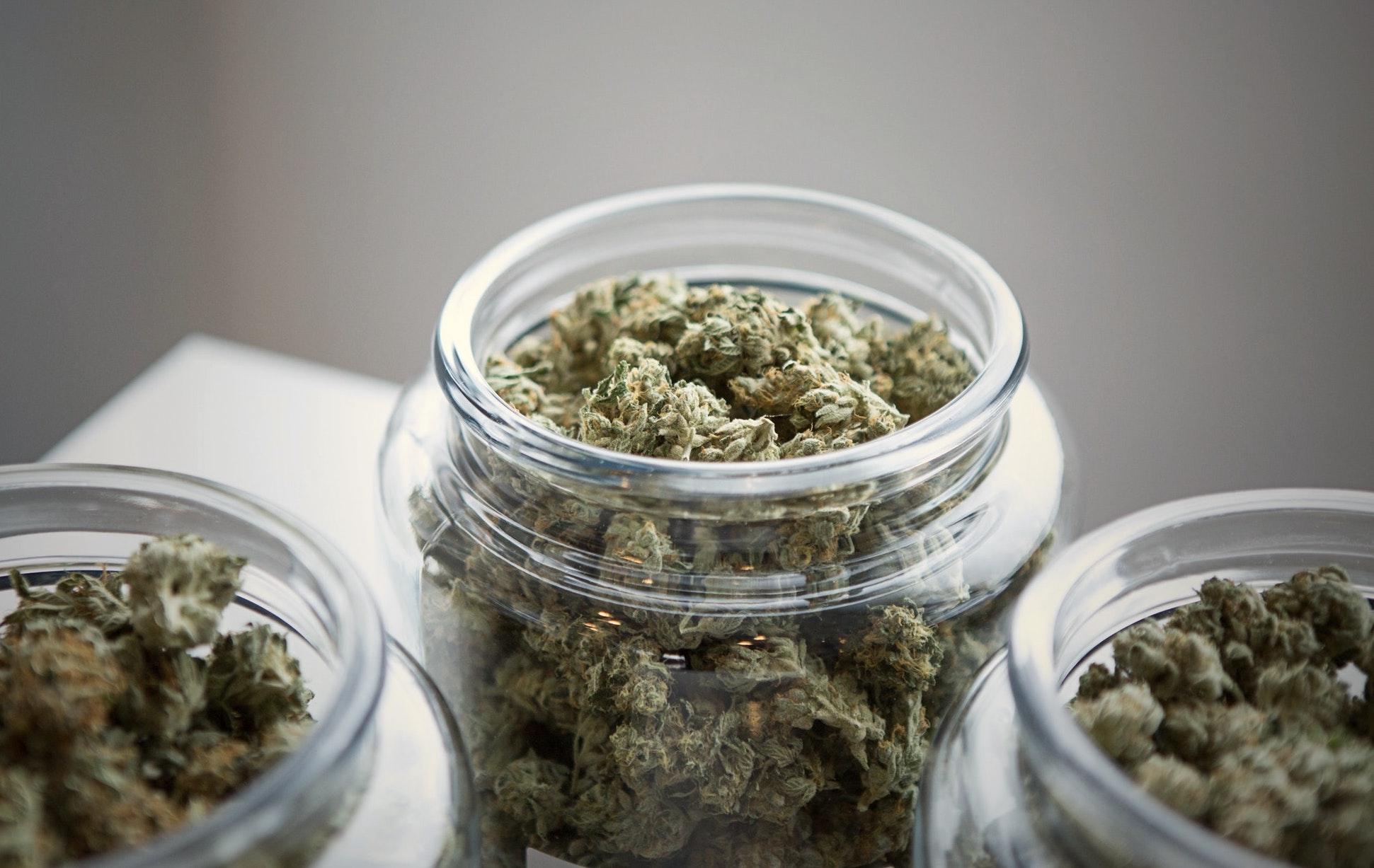activatedliving-cannabis-strains-blog