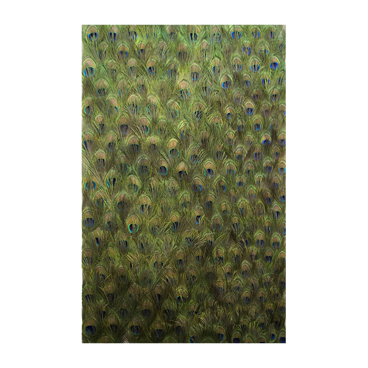 Untitled (Peacock Feathers on Linen), Carol Bove, 2011
