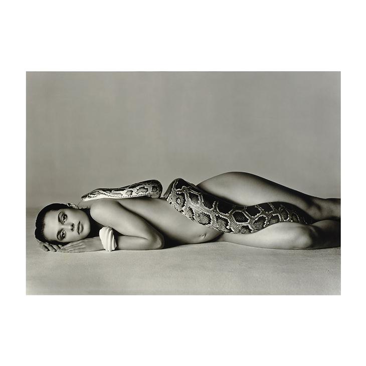 Nastassja Kinski and the Serpent, Richard Avedon, June 14, 1981, # 69/200