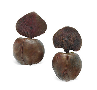 A Pair Of Patinated Bronze Ear Clips, By Claude Lalanne