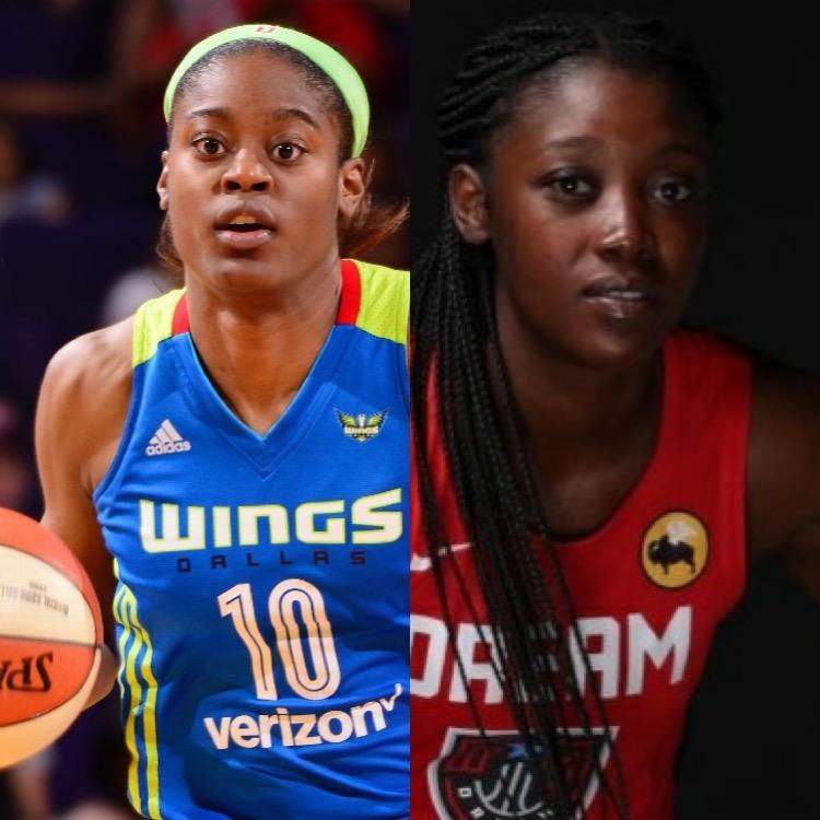 Dream Signs Free Agent Forward-Guard Kaela Davis