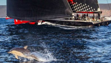Photo of Good job Comanche: you took line honours in Rolex Sydney Hobart Yacht Race