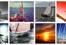 Photo of Discover our Instagram #sailuniversedaily photo of the week/14