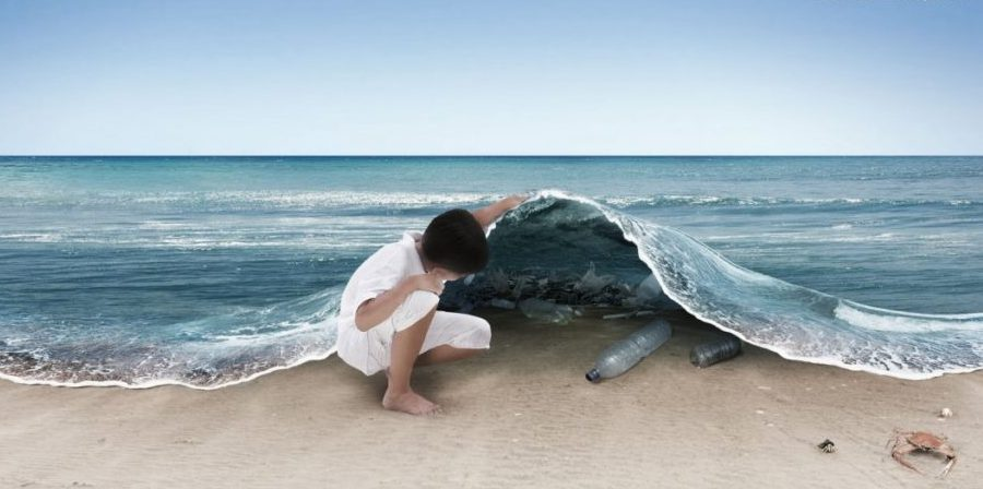 Photo of The price we pay for plastic: what can we do to save the oceans?