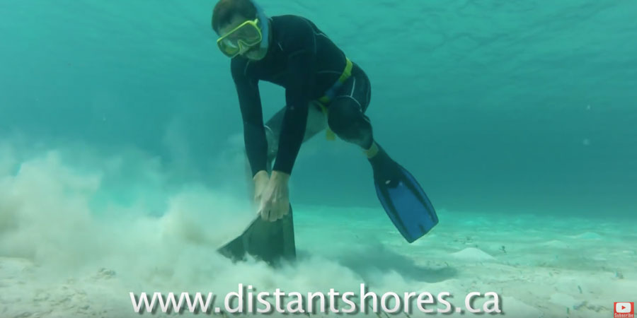 Photo of Rocna Anchor testing and setting underwater. VIDEO
