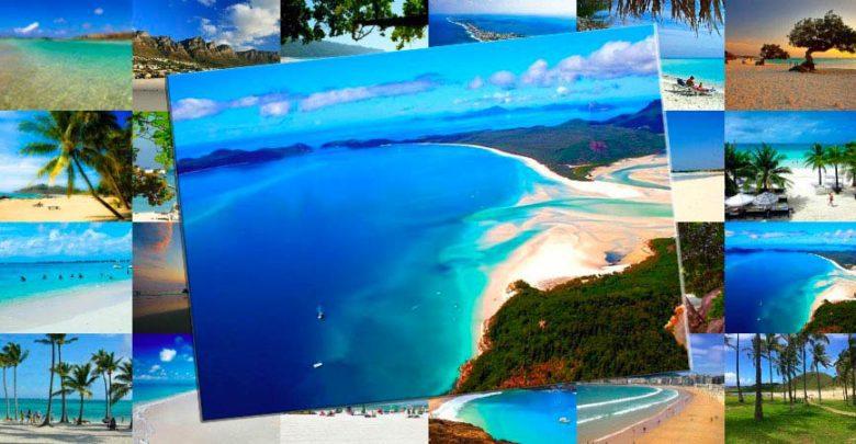trip advisor traveller choice