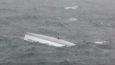 Photo of Miraculous Survival at Sea. VIDEO