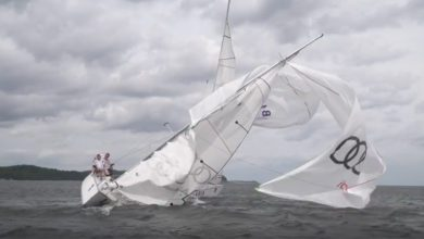 Photo of Please, don't bother my mast! VIDEO