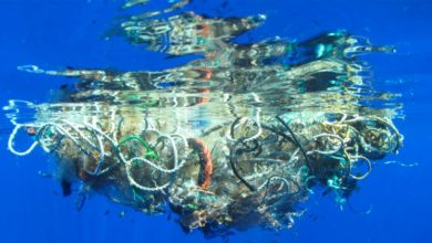 Photo of Ocean Pollution: New Data reveals Microplastics in World's Remotest Ocean