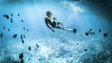 Photo of Snorkeling in Safety – 9 Tips for Reducing Risk in the Water