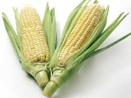 Bihar's A-maize-ing Feat!