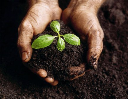 Life starts from the soil and ends into the soil