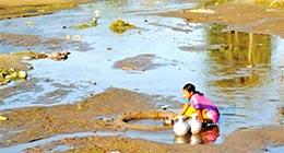 """Bihar Prithvi Divas"" to save stressed Bihar?"